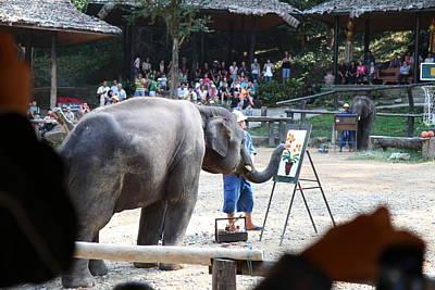 Elephant Show - Maesa Elephant Camp - Chiang Mai Thailand - 011347 Poster by DC Photographer
