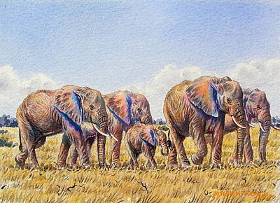 Elephants Walking Poster