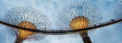 Elevated Walkway Among Supertrees Poster