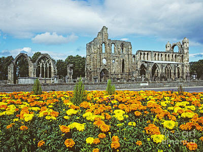 Elgin Cathedral - Scotland Poster