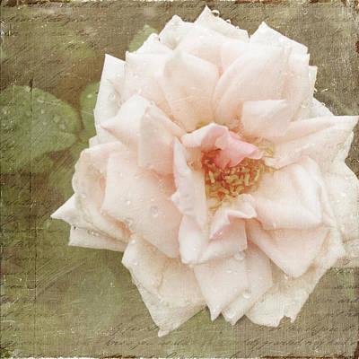 Elie Beauvillain Rose Textured Art Poster