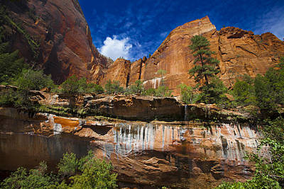 Emerald Pools Falls Zion Park Poster by Richard Wiggins