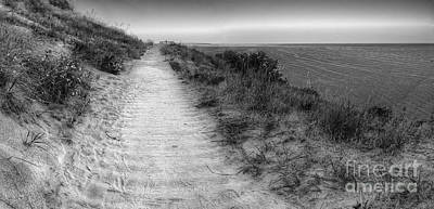 Empire Bluff Trail Poster by Twenty Two North Photography