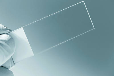 Empty Microscope Slide Poster by Wladimir Bulgar