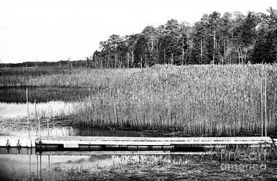Empty Pine Barrens Poster by John Rizzuto
