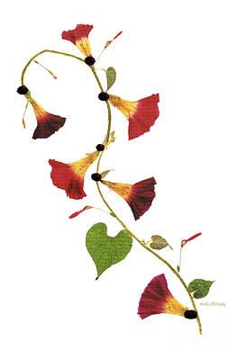Enchanted Garden Morning Glories Poster
