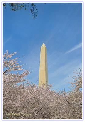Enchanting Spring In Washington Poster by Sonali Gangane