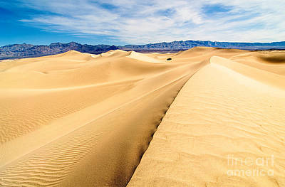 Endless Dunes - Panoramic View Of Sand Dunes In Death Valley National Park Poster