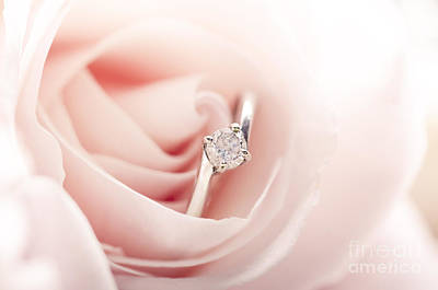 Engagement Ring In Pink Rose Poster