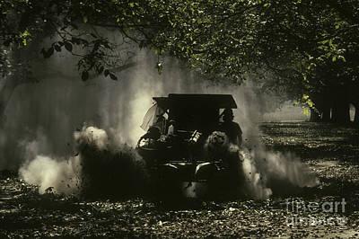 English Walnut Harvest Poster by Ron Sanford