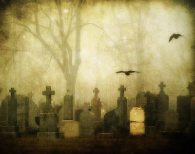 Enveloped By Fog Poster