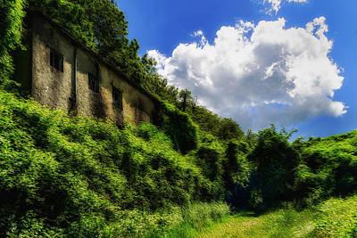 Enveloping Vegetation On Abandoned Houses - Vegetazione Avviluppante Sulle Case Abbandonate Poster