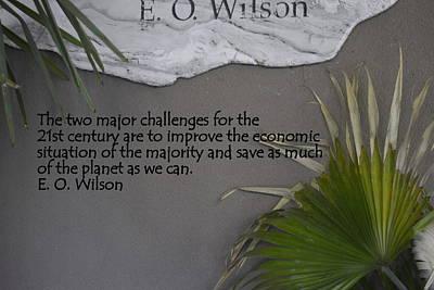 E.o. Wilson Quote Poster