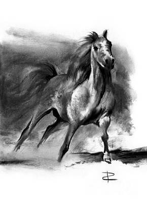 Equine II Poster by Paul Davenport