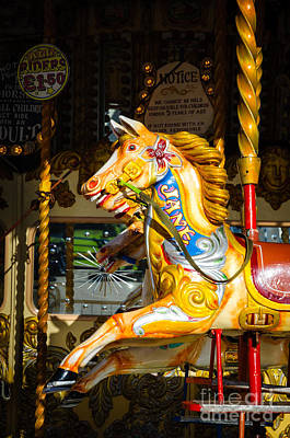 Equine Nostalgia - Horse On A Victorian Carousel Poster by David Hill