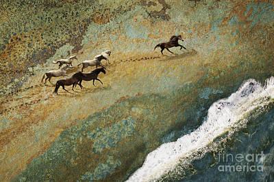 Equine Seascape Poster