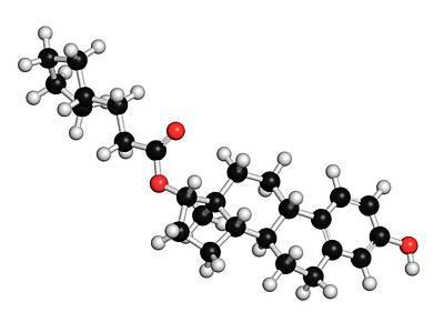 Estradiol Cypionate Estrogen Prohormone Poster by Molekuul