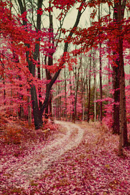 Ethereal Forest Path With Red Fall Colors Poster