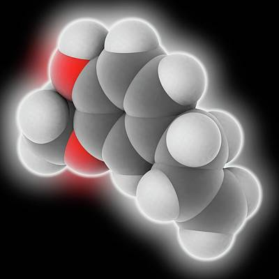 Eugenol Molecule Poster by Laguna Design