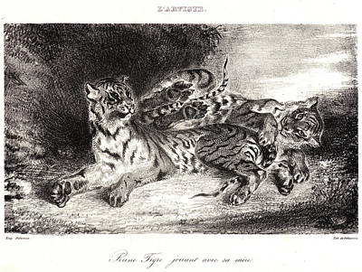 Eugène Delacroix French, 1798 - 1863. Young Tiger Playing Poster by Litz Collection