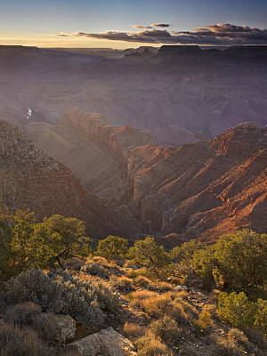 Evening Light At The Grand Canyon Poster