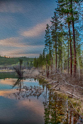 Evening On The Banks Of A Beaver Pond Poster