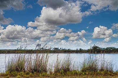 Everglades Lake 6853 Poster by Rudy Umans