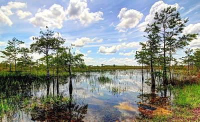 Everglades Landscape 8 Poster by Rudy Umans
