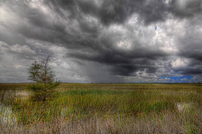 Everglades Storm Poster by Rudy Umans