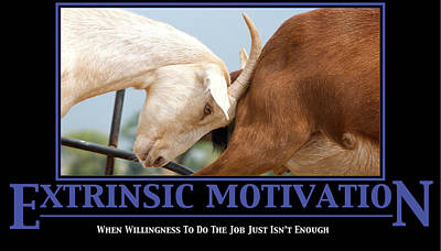Extrinsic Motivation De-motivational Poster Poster by Lisa Knechtel