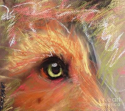 Eye Of Fox Poster
