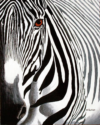 Eye Of The Zebra Poster