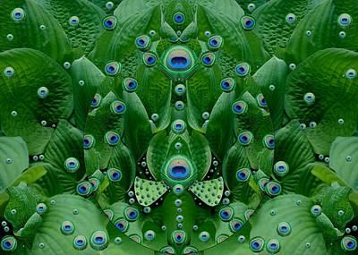Eyes Of The Hidden Peacock Poster