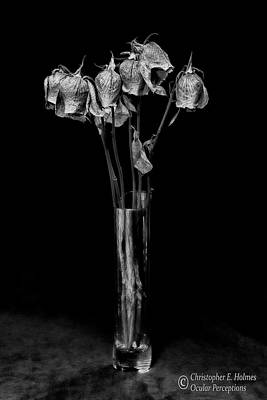 Faded Long Stems - Bw Poster