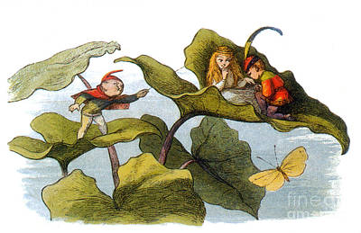 Fairy Courtship Cut Short Poster by Photo Researchers