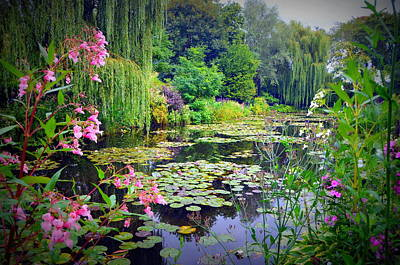 Fairy Tale Pond With Water Lilies And Willow Trees Poster