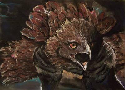 Falcon Opera  Poster