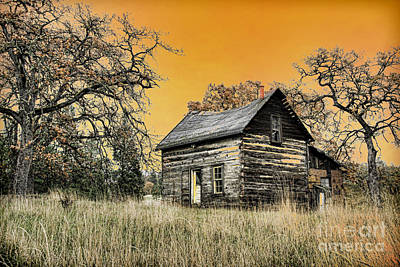 Fall Abandoned Poster by Steve McKinzie