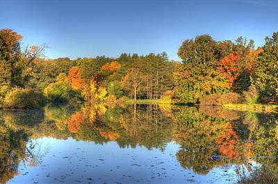 Poster featuring the photograph Fall At Lake Marmo by Ed Cilley
