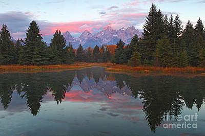 Fall At Schwabacher's Poster