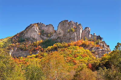 Fall At Seneca Rocks Poster