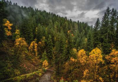 Fall At Silver Falls Poster by Dennis Bucklin