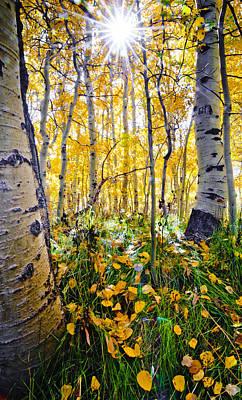 Fall At Silver Lake Poster