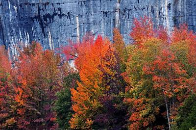 Fall At Steele Creek Poster