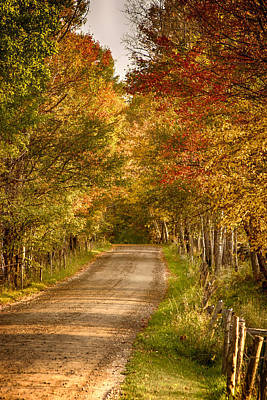 Fall Color Along A Peacham Vermont Backroad Poster by Jeff Folger