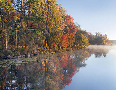 Fall Colors Along Lake Bailee In Petit Poster by Tim Fitzharris