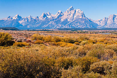 Poster featuring the photograph Fall Colors In The Tetons   by Lars Lentz
