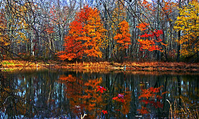 Fall Colors On Small Pond Poster by Andy Lawless
