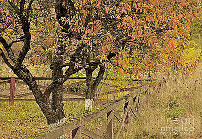 Fall Fenced Poster by Tonia Noelle