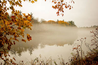 Fall Foggy Day  Poster